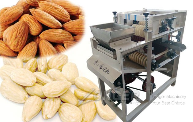 Wet Almond Peeling Machine Sale In India