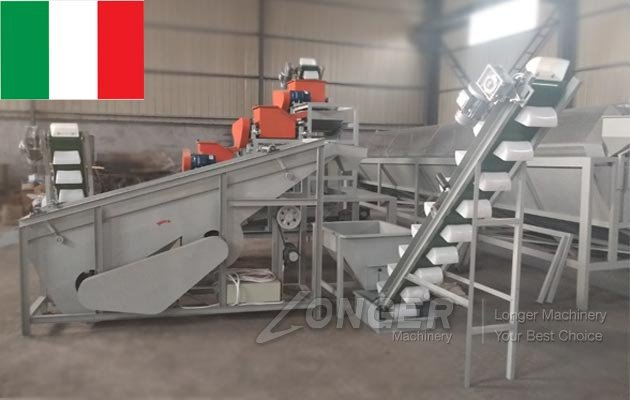 Industrial Hazelnut Shelling Machine Transported to Italy