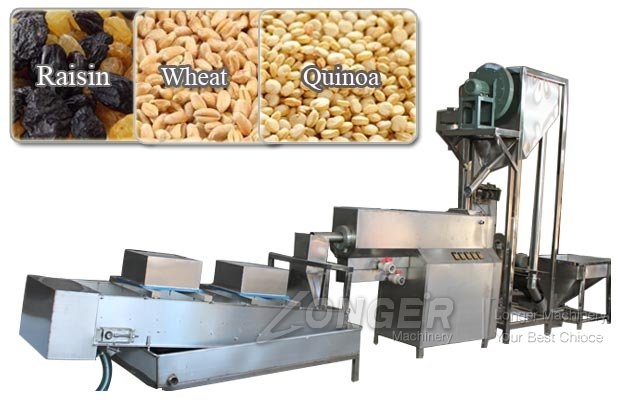 Industrial Raisin Cleaning Equipment|Sesame Seed Washing Drying Machine Manufacturer