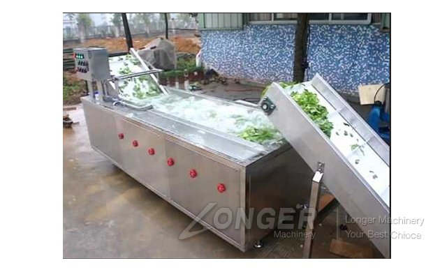fruit brush roller washing machine