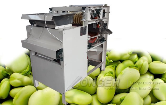 fava broad beans peeling machine