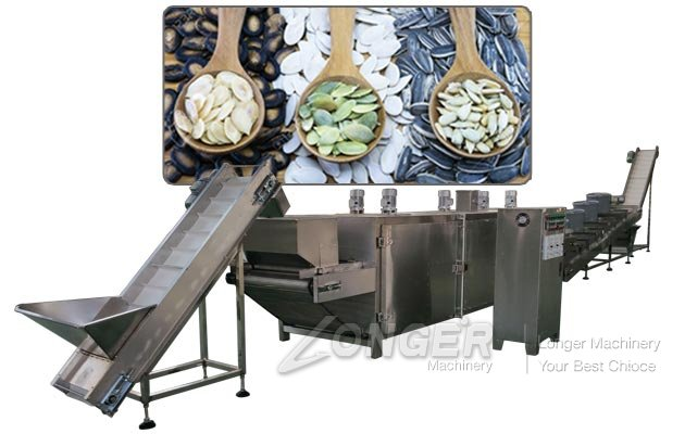 Pumpkin Seed Roasting Seasoning Machine