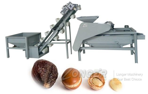 Commercial Olive Seed Shelling Machine
