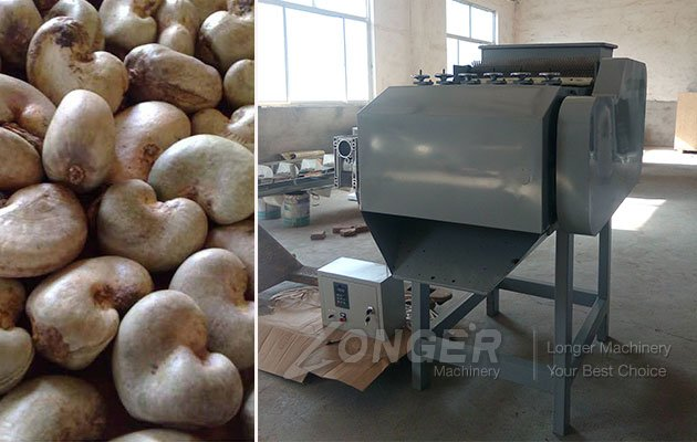 Raw Cashew Nut Processing Machinery Price